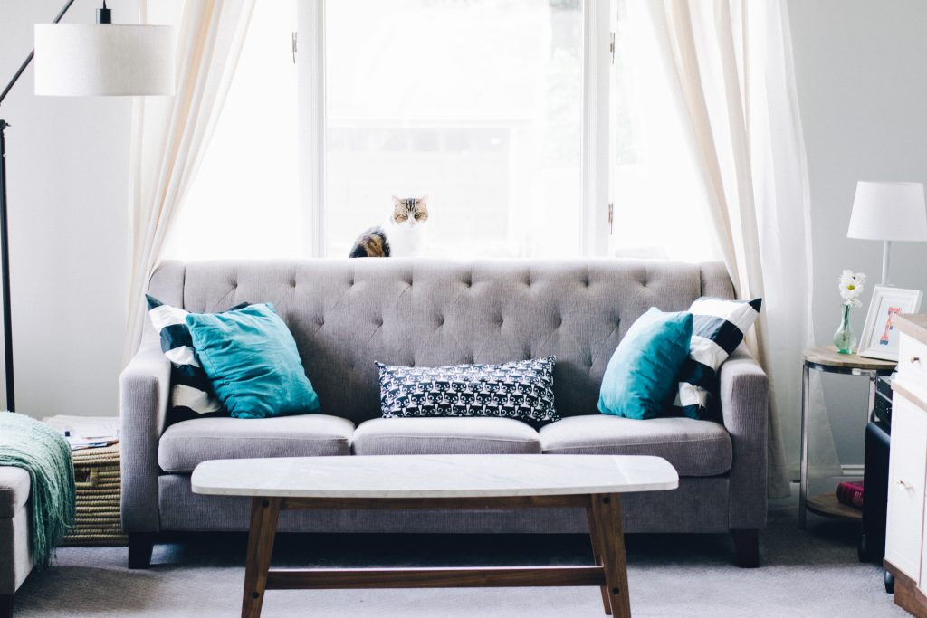 Couch perfectly aligned with coffee tabel in front of it on top a cat, home staging tips to make your home sell fast.
