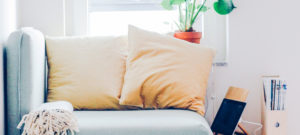gray couch with plant in background, how to find your dreamhouse