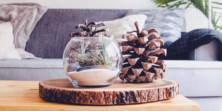 pine-cone-on-a-wooden-table