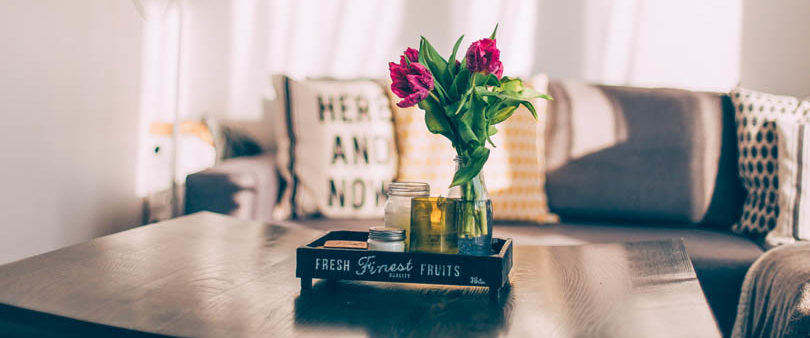 Salon d'un bien avec coussins et plante