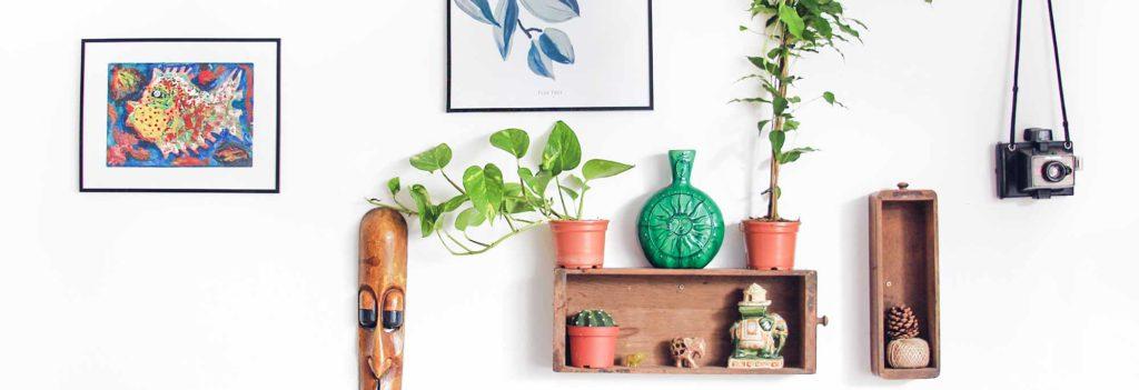 Decoration d'un bien avec des tons chauds, des etageres, des cadres et des plantes