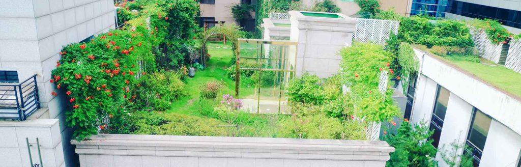 magnifique toiture verte sur un immeuble en ville