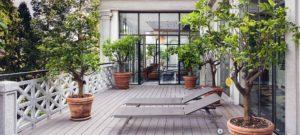 jolie terrasse en bois avec des plantes vertes en ville