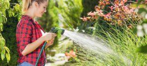 femme qui s'occupe de son jardin en été